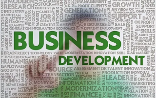 Business Develoment Strategies